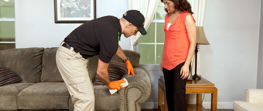 Edgewood, OH carpet upholstery cleaning